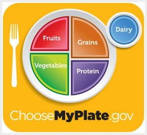 The MyPlate model teaches people to eat fruits, vegetables, grains, protein and dairy foods.