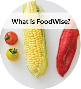 What is FoodWIse?
